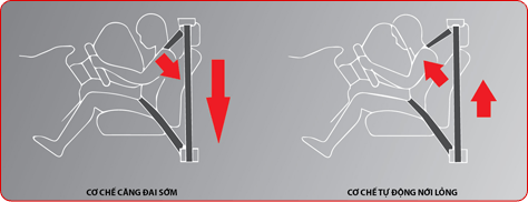 slide4-comp4 (1)