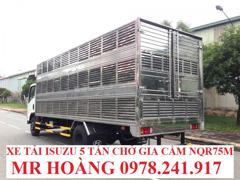 xe tải isuzu 5 tấn nqr75m thùng chở gia cầm